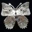 พร้อมส่ง big butterfly diamond Brooch เข็มกลัดเพชรทรงผีเสื้อ สไตส์ chanel thumbnail 3