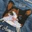 เสื้อผ้าเกาหลี พร้อมส่งแจ๊กเก็ตผ้าเดนิมปักลายแมว thumbnail 15