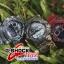 GShock G-Shockของแท้ ประกันศูนย์ GD-120CM-5A ลายพรางทหารสีเขียว จีช็อค นาฬิกา ราคาถูก ราคาไม่เกิน สี่พัน thumbnail 11