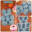 พิมพ์ยางซิลิโคน ลายหมี 6 ช่อง (คละสีนะจ๊ะ) thumbnail 1