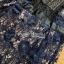 ชุดเดรสเกาหลี พร้อมส่งเดรสผ้าลูกไมลายดอกไม้สีน้ำเงินตกแต่งปกสีดำ thumbnail 10