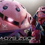 RG 1/144 16 Char's Z'Gok