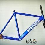 SPRINGER NEO FRAME - Blue