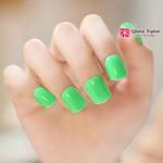 เล็บปลอม เกาหลี แฟชั่น Light Green