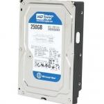 [HDD] HDD 250G/7200/8M SATA 1 PC คละยี้ห้อ