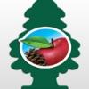 กลิ่น Apple Woods เหมือนเดินอยู่ท่ามกลางป่ามีต้นแอปเปิ้ลรายล้อม หอมสดชื่น