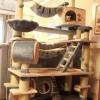 คอนโดแมวขนาดใหญ่ เพิ่มที่ประโยชน์ใช้สอยมากกว่าเดิม รุ่นจัมโบ้สุดคุ้ม Customized models