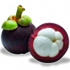 MANGOSTEEN 30ml.