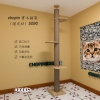 คอนโดแมวสูงติดเพดาน เหมาะสำหรับเพดานสูง 240-300