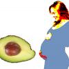 อาโวคาโด ผลไม้สารพัดประโยชน์ของ คุณแม่ตั้งครรภ์