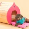 บ้านหมาแมว รูปทรงลูกพีช สำหรับสัตว์เลี้ยงไซส์เล็ก