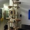 MU0073 คอนโดแมวเจ็ดชั้น ขนาดใหญ่ ต้นไม้แมว มีบ้านอุโมงค์ กระบะนอน เปลนอนของเล่นแขวน บันได เชือกให้ไต่ออกกำลังกาย ยึดติดเพดาน สูง 240-270 cm