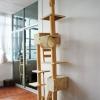 MU0007 คอนโดแมวหกชั้น ต้นไม้แมว ขนาดใหญ่ cat tree มีกล่องและอุโมงค์เล่นซ่อนหาและงีบพักผ่อน สูง 240-275 cm