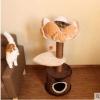 คอนโดแมว บ้านแมว ทรงดอกบัว