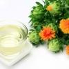 Safflower Seed Oil ดอกคำฝอย