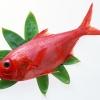 เนื้อปลา เป็นอาหารที่ควรทานในช่วง การตั้งครรภ์ 1-9 เดือน ตลอดเลยหรือไม่ ?