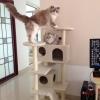 MU0060 คอนโดแมวห้าชั้น ต้นไม้แมว มีบ้านอุโมงค์สองชั้น ของเล่นแขวน สูง 150 cm