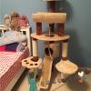 คอนโดแมวน่ารัก มีอุโมงค์ เชือกของเล่น เบาะนอน บันไดสไลด์