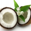 กลิ่น COCONUT FRAGRANCE 30ml.