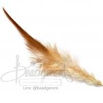 ขนนก 13ซม. สีน้ำตาล สองสี (15 ชิ้น)