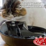 MU0027 น้ำพุแมว เซรามิกเคลือบเงา ระบบกรองน้ำสะอาดใสเย็นชื่นใจ CERAMIC DRINKING FOUNTAIN นำเข้าจากญี่ปุ่น
