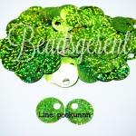 เลื่อมหูช้าง 20มม. สีเขียวใบไม้ (10 กรัม)