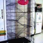 กรงแมว 5 ชั้น มีบันไดและประตูเปิดได้ทุกชั้น มีล้อเคลื่อนย้ายง่าย สูง 196 cm หนัก 30 kg.
