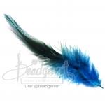 ขนนก 13ซม. สีฟ้า สองสี (15 ชิ้น)