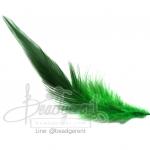 ขนนก 13ซม. สีเขียว สองสี (15 ชิ้น)