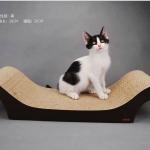MU0003 โซฟาแมว ROMA TADA ที่ลับเล็บแมว ที่ฝนเล็บแมว ป้องกันแมวน้อยซนข่วนเฟอร์นิเจอร์ในบ้าน