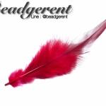 ขนนก 13ซม. สีแดงปลายเข้ม (3 ชิ้น)