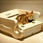 ห้องน้ำแมวอัตโนมัติ LITTERMAID ระบบเซ็นเซอร์ ทำความสะอาดให้หลังจากแมวทำกิจธุระเสร็จแล้ว ทำให้กลิ่นหอมสดชื่น สะดวกเหมาะสำหรับคนที่ไม่มีเวลา