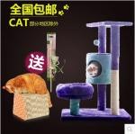คอนโดแมวสามชั้น ต้นไม้แมว มีของเล่นแขวน กระบะนอนพักผ่อน กล่องบ้านอุโมงค์ เฉด 2 สี สูง 77cm
