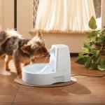 น้ำพุหมาน้ำพุแมว Drinkwell Original Pet Fountain with Bonus 50-Ounce Reservoir ของพร้อมส่ง