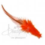 ขนนก 13ซม. สีส้ม สองสี (15 ชิ้น)