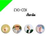 เข็มกลัด EXO CBX