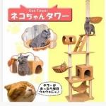 คอนโดแมวขนาดใหญ่และสูง บ้านแมว ที่ลับเล็บแมว เหมาะสำหรับไว้ในโรงแรมแรม คลีนิค หรือ รพ.สัตว์เลี้ยง