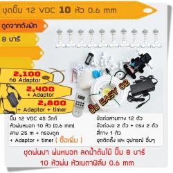 ชุดปั๊ม 12 VDC 10 หัว 0.6 mm