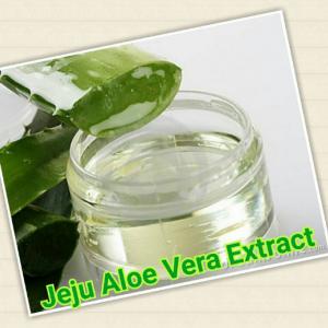 Jeju Aloe Vera Extract