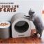ของเล่นแมว ที่ลับเล็บแมวลูกฟูก รูปทรงกลม thumbnail 1