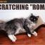 MU0003 โซฟาแมว ROMA TADA ที่ลับเล็บแมว ที่ฝนเล็บแมว ป้องกันแมวน้อยซนข่วนเฟอร์นิเจอร์ในบ้าน thumbnail 4