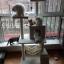 MU0052 คอนโดแมวห้าชั้น ต้นไม้แมว มีเปลไว้นอนพักผ่อน สูง 145 cm thumbnail 5