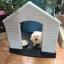 บ้านพลาสติกสัตว์เลี้ยง หมาแมว ตั้งไว้กลางแจ้งได้ ระบายอากาศปลอดโปร่ง thumbnail 18
