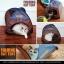 MU0016 เต๊นท์นอนอุโมงค์แมว ตาข่าย ระบายอากาศได้ดี FOLDING CAT TENT thumbnail 9