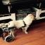 รถเข็นสำหรับสัตว์พิการ วีลแชร์หมา วีลแชร์แมว วีลแชร์สำหรับสัตว์เลี้ยงอายุมาก ขนาดเล็ก สำหรับขาหลัง รุ่น CF-01 thumbnail 12