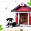 บ้านไม้หมาน้อยยกพื้น บ้านส่วนตัวของหมาน้อยขนาดกระทัดรัด สีแดง thumbnail 7