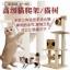 MU0088 คอนโดแมวสี่ชั้น ต้นไม้แมว บ้านอุโมงค์ กระบะนอน เชือกให้ปีนออกกำลังกาย สูง 160 cm thumbnail 2
