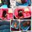 ที่นอนสัตว์เลี้ยง ที่นอนหมาแมว นุ่มสบาย thumbnail 4