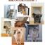 ประตูหมาแมว ประตูเล็กสำหรับให้หมาแมวเข้าออกได้เอง thumbnail 3