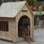 บ้านสุนัข สำหรับสัตว์เลี้ยงไซส์ใหญ่ ตั้งไว้กลางแจ้งได้ ระบายอากาศปลอดโปร่ง กันแดดกันฝน เป็นพื้นที่ส่วนตัวให้เจ้าตัวน้อยอย่างเป็นสัดส่วนค่ะ thumbnail 7